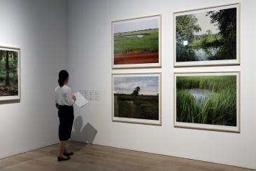 ヴァンティー・ラッタナ《「爆弾の池」シリーズ》 この写真は「クリエイティブ・コモンズ表示 - 非営利 - 改変禁止 2.1 日本」ライセンスでライセンスされています。